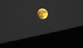 Rising moon. Nikon bright almost full Royalty Free Stock Photos