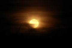 The rising moon. It is the rising moon in phenomenon of full moon on 9th september 2014 Stock Image