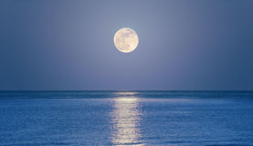 Rising moon on sea. Big full moon is rising above the sea at dusk Royalty Free Stock Photography