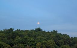 Rising moon and tropical forest. Rising moon tropical forest sunset stock photo