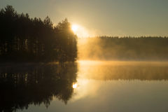 Rising in morning fog on the forest lake. Morning. In Finland stock photo