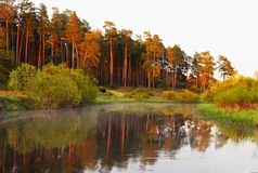 Rising morning sun shining on lake Royalty Free Stock Photo