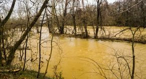 Rising Roanoke River Next to the Roanoke River Greenway. February 24th, 2019: A winter of the rising Roanoke River next to the Roanoke River Greenway located in stock photography