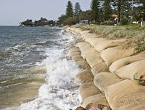 Rising sea levels. Erosion caused by rising sea levels due to global warming royalty free stock photos