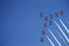 Rising Snowbirds Royalty Free Stock Photos