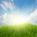 Rising sun and green grass under blue sky Stock Images