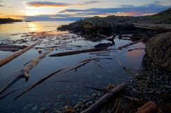 Rising sun lights the distant clouds and nearby driftwood along the coast of southern Saanich Peninsula, Vancouver Island. British Columbia stock image