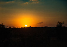 The rising sun over the Kruger-National Park. South Africa royalty free stock photo