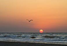 Rising of the sun over sea Stock Photos