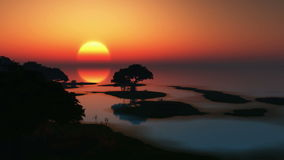 Rising sun and trees at ocean Stock Photos