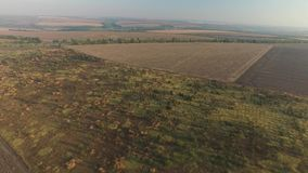 Rising up on the plowed fields and a small garden. Several plowed fields are close to each other, they are separated by a small garden with low trees in the stock video