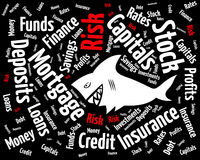 Risk in the financial world. Shark between phrases of the world of finances Royalty Free Stock Image