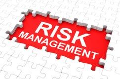 Risk management. 3d generated picture of a risk management concept vector illustration