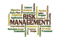 Risk Management. Word cloud on white background royalty free stock photos