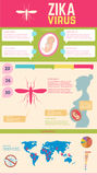 The risk for pregnant women. Zika virus alert Stock Images