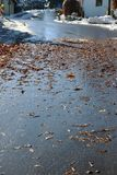 Risk of slipping due to wet leaves and snow on a road.  Royalty Free Stock Photography