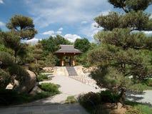 riskerade den trädgårds- makroen krattade sanden zen för stenar tre Royaltyfria Bilder