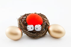 Risking the Nest Egg. Dice placed in with a red, at risk nest egg surrounded by two, golden nest eggs Stock Images