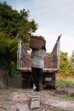 Risky cassava conveying Royalty Free Stock Photography