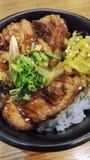 Riso asiatico con il pollo di Teriyaki Fotografia Stock Libera da Diritti