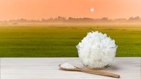 Riso bianco asiatico con il giacimento del riso Fotografie Stock