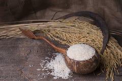 Riso bianco in ciotola di legno Fotografia Stock
