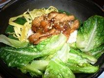 Riso caldo del pollo del wok Fotografia Stock