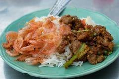 Riso con curry tailandese del sud immagini stock