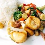 Riso con il tofu fritto misto immagine stock libera da diritti