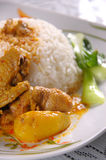 Riso del pollo del curry Fotografie Stock