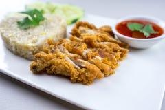 Riso del pollo fritto fotografia stock libera da diritti