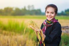 Riso della tenuta della donna dell'agricoltore nel campo Immagine Stock Libera da Diritti