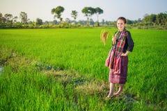 Riso della tenuta della donna dell'agricoltore nel campo Fotografia Stock