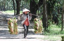 Riso di trasporto dell'agricoltore di nuovo a casa Fotografie Stock