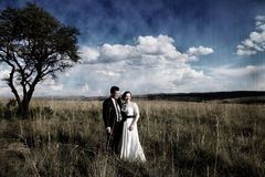 Riso dos pares do casamento Foto de Stock