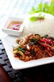 Riso e basilico tailandesi dell'alimento Fotografie Stock
