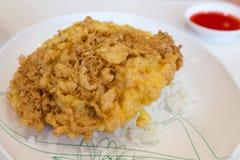 Riso ed omelette Fotografie Stock Libere da Diritti