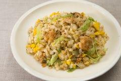 Riso fritto con il pollo tritato ed uova sul piatto bianco Fotografia Stock