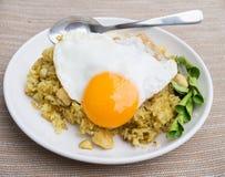 Riso fritto con l'uovo Fotografie Stock