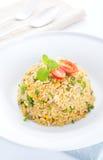 Riso fritto dell'uovo cinese asiatico Fotografie Stock