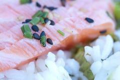 Riso giapponese di Shashimi dell'alimento Fotografie Stock