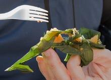 Riso mangiatore di uomini avvolto in foglie, in zongzi o in chimaki di bambù fotografie stock