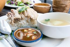 Riso, pollo, minestra e salsa immagine stock libera da diritti
