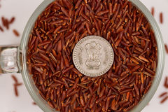 Riso rosso selvaggio in una tazza di vetro e nelle rupie indiane Fotografia Stock