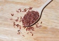 Riso rosso sul cucchiaio di legno Immagini Stock Libere da Diritti