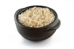 Riso sbramato dell'intero grano cucinato integrale Fotografia Stock Libera da Diritti