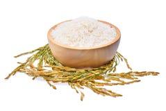 Riso tailandese del gelsomino del riso bianco e riso non macinato isolato sul whi Fotografia Stock
