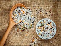 Riso tailandese tradizionale del multi grano misto, cereale, girasole, segale, s Fotografie Stock