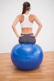 Risolvere castana adatto con la palla di esercizio Fotografie Stock
