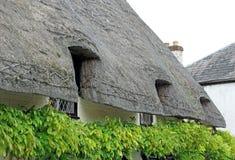 Risonanza ha ricoperto di paglia il tetto del cottage del paese immagini stock